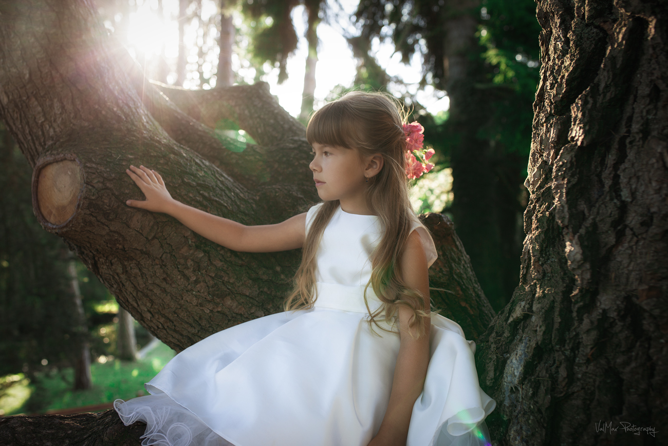 Little forest fairy